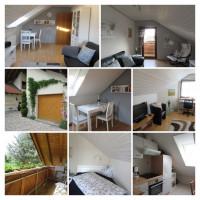 Business-Apartment / Ferienwohnung Nießing