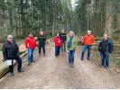Holzeinschlag im Wald