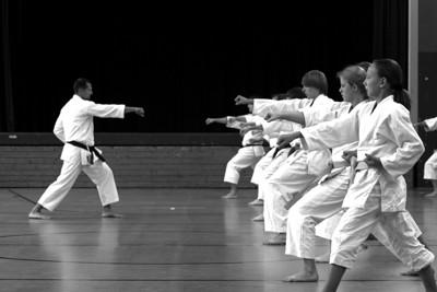 Karate Dojo Ichibyoshi Betra (Abteilung im Tus Betra)