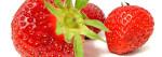 Erdbeerfest, Foto: Dr. Klaus-Uwe Gerhardt
