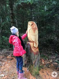 NET Walderlebisweg Rottenbrug Holzskulptur Eule