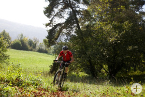 Mountainbiking, Foto: Ulrike Klumpp